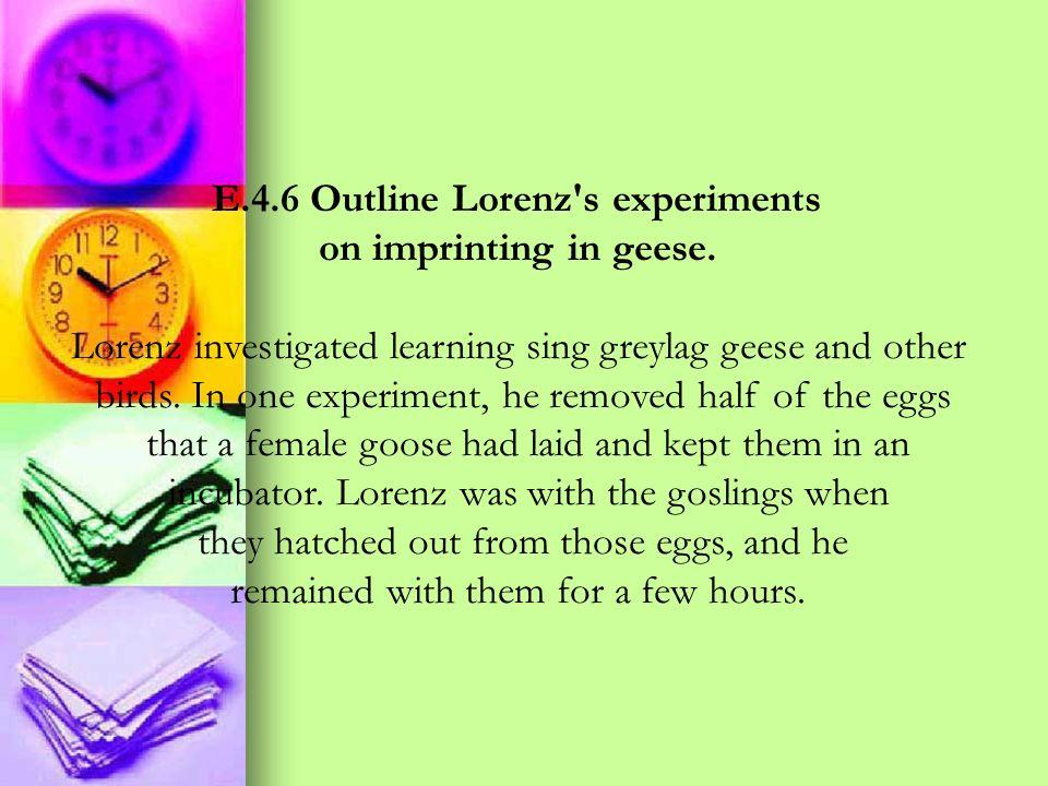 E.4.6 Outline Lorenz s experiments