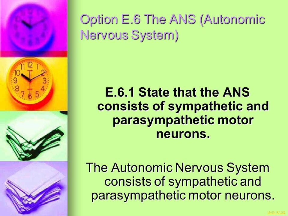 Option E.6 The ANS (Autonomic Nervous System)