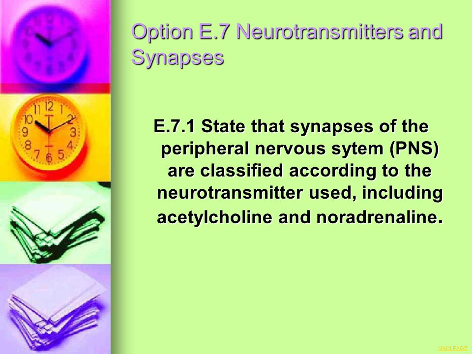 Option E.7 Neurotransmitters and Synapses