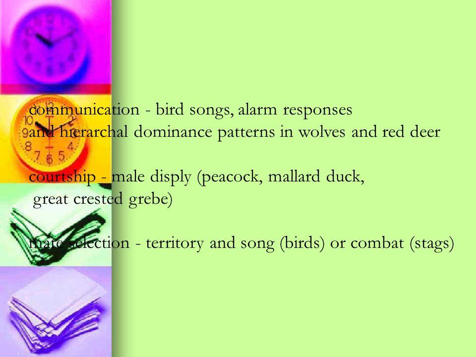 communication - bird songs, alarm responses