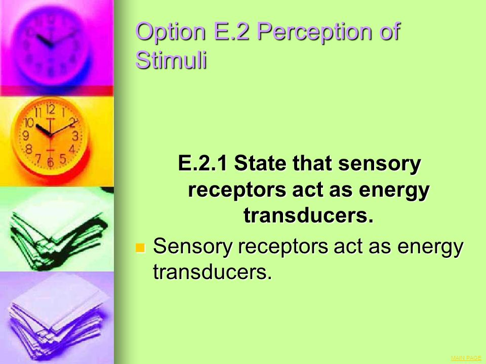Option E.2 Perception of Stimuli