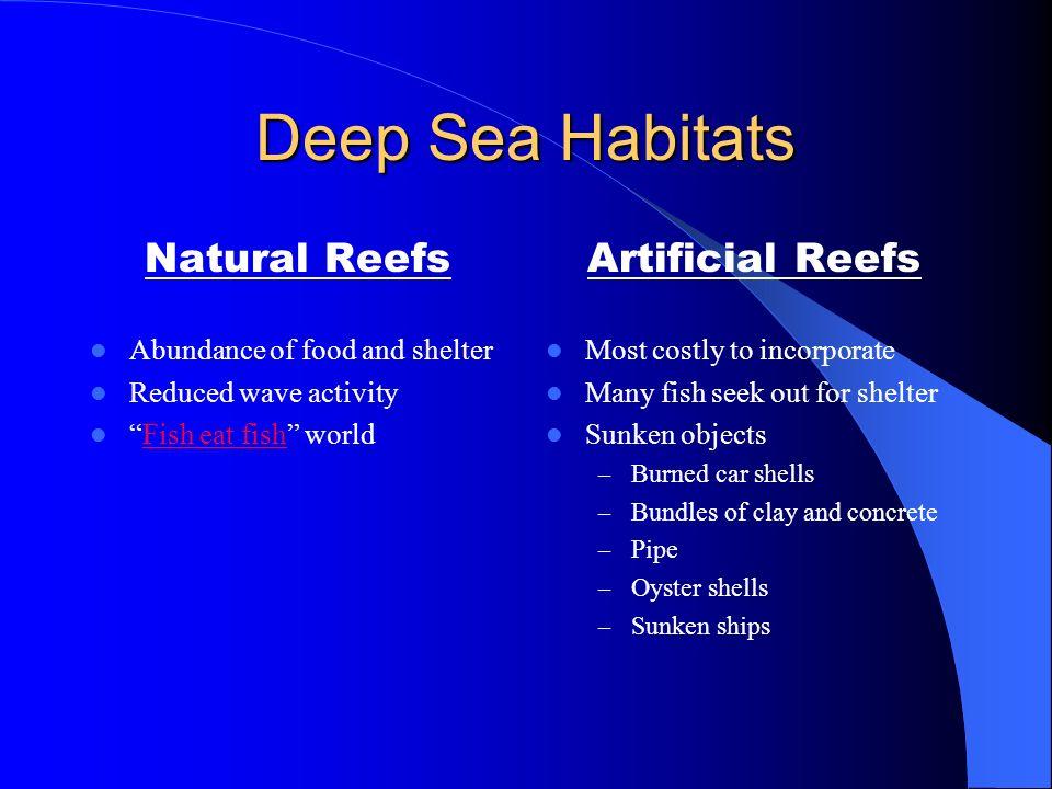 Deep Sea Habitats Natural Reefs Artificial Reefs
