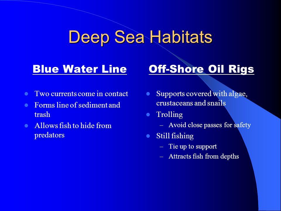 Deep Sea Habitats Blue Water Line Off-Shore Oil Rigs