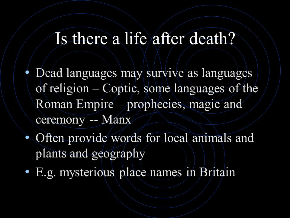Is there a life after death