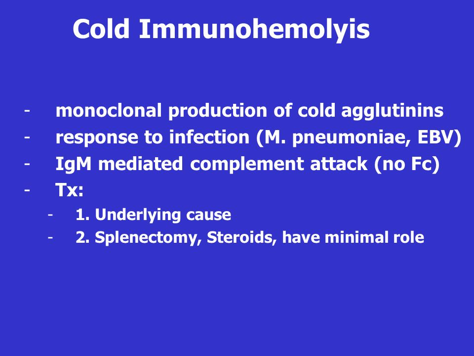 Cold Immunohemolyis monoclonal production of cold agglutinins