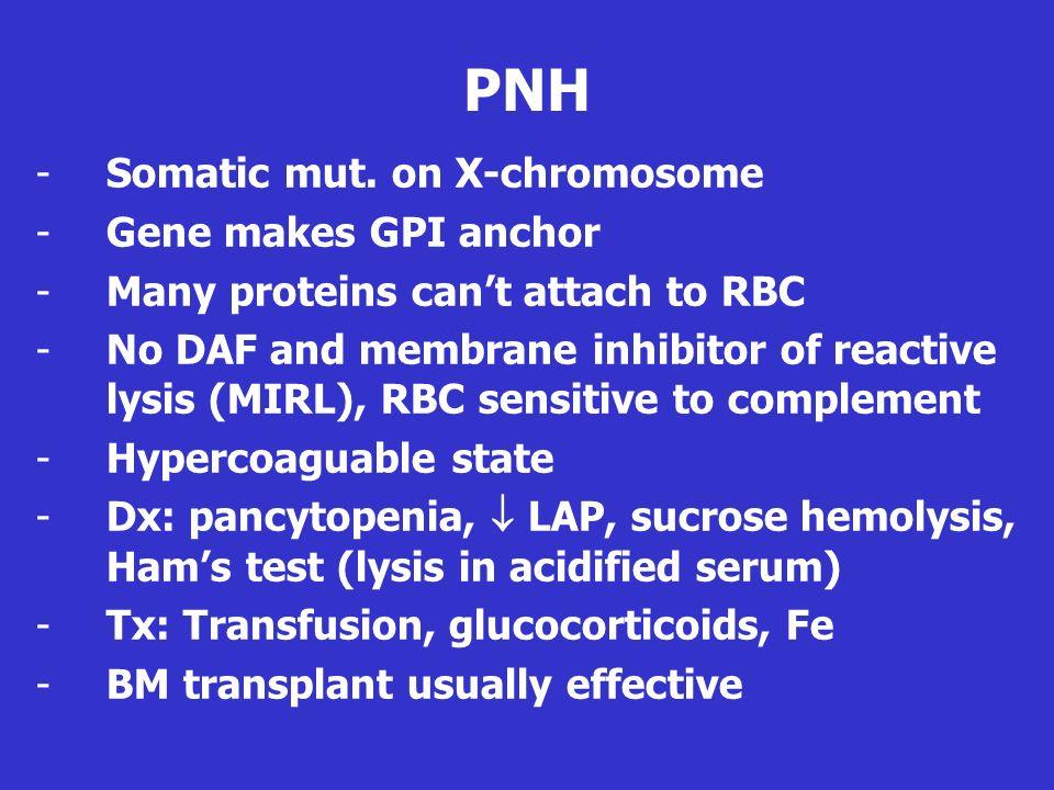 PNH Somatic mut. on X-chromosome Gene makes GPI anchor