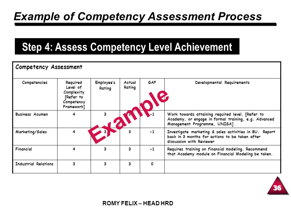 Example Example of Competency Assessment Process