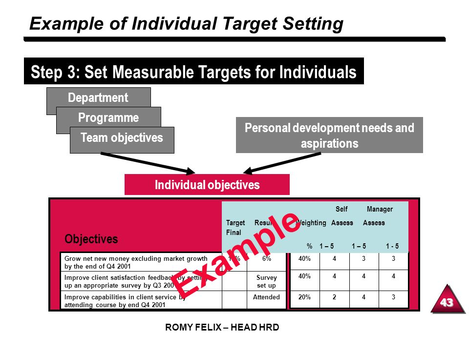 Example Example of Individual Target Setting