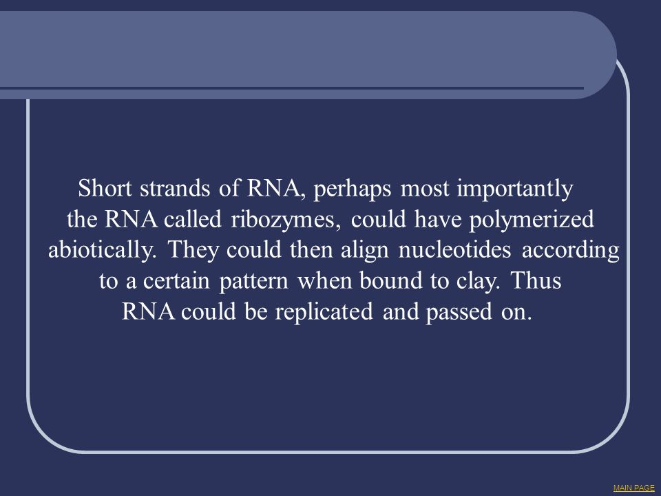 Short strands of RNA, perhaps most importantly