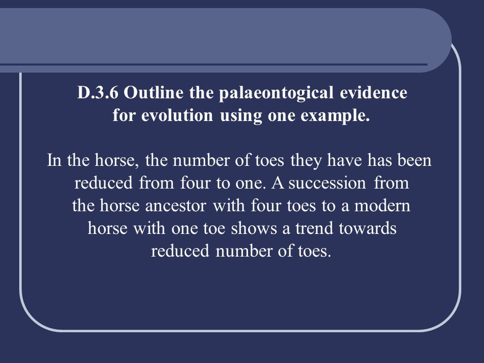 D.3.6 Outline the palaeontogical evidence
