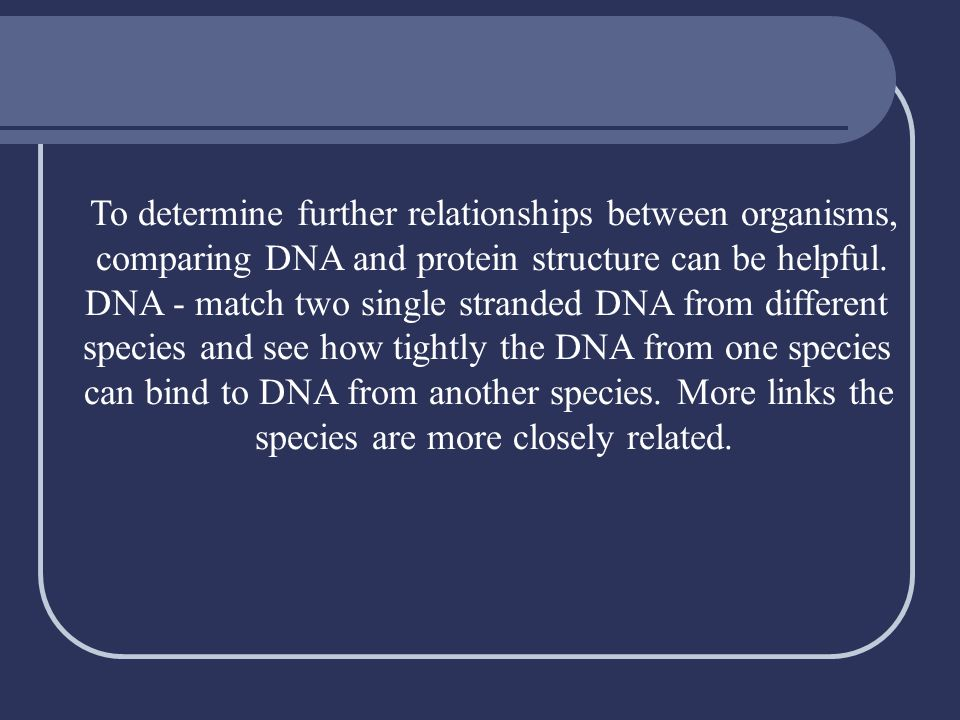 To determine further relationships between organisms,
