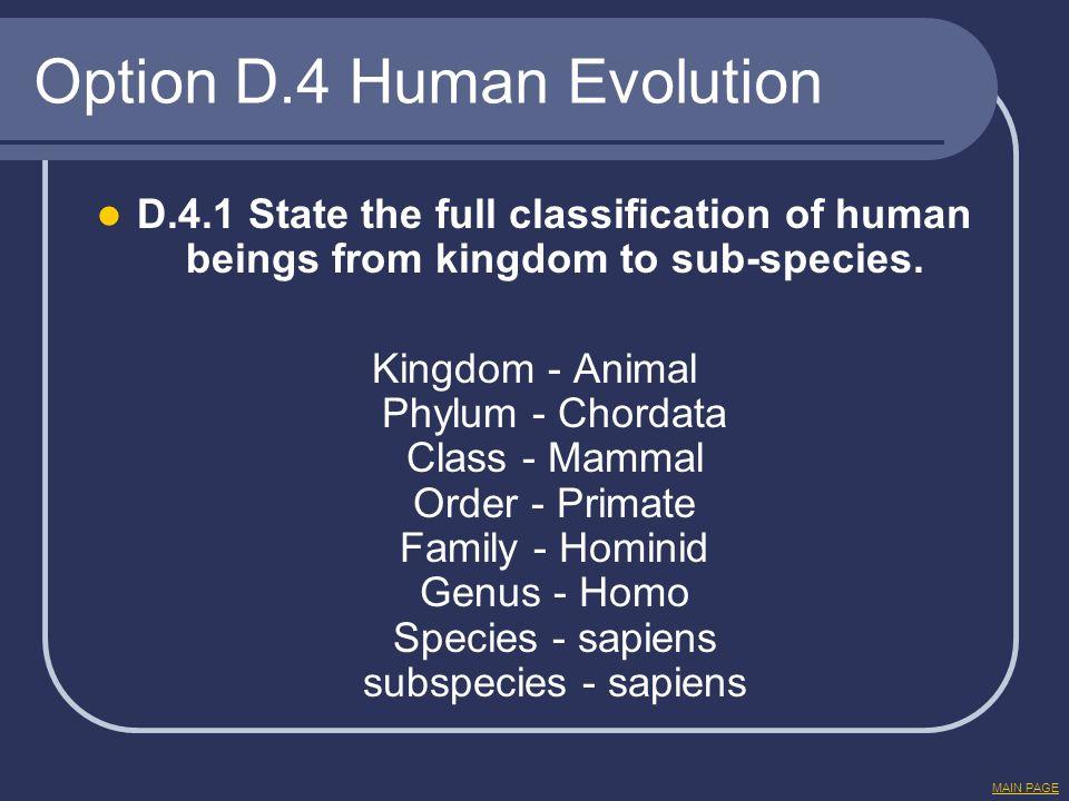 Option D.4 Human Evolution