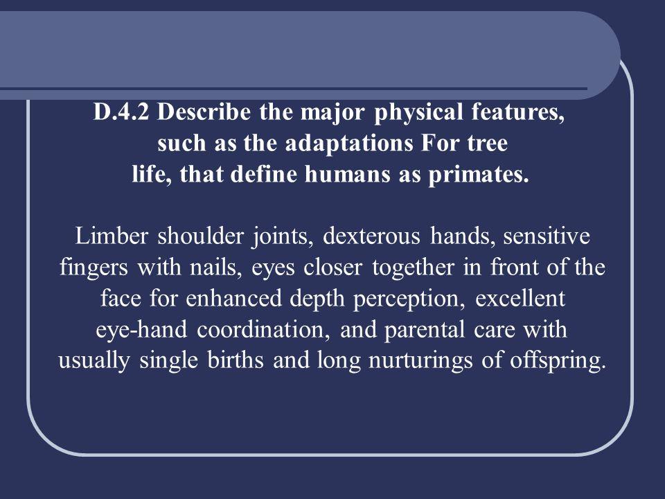 D.4.2 Describe the major physical features,