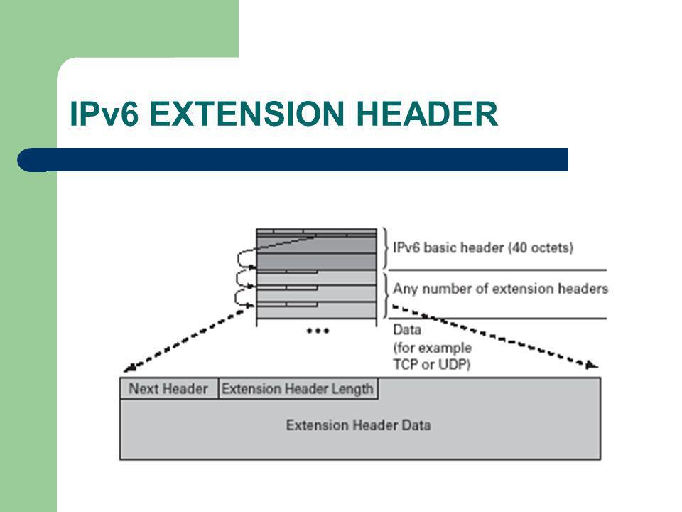 IPv6 EXTENSION HEADER