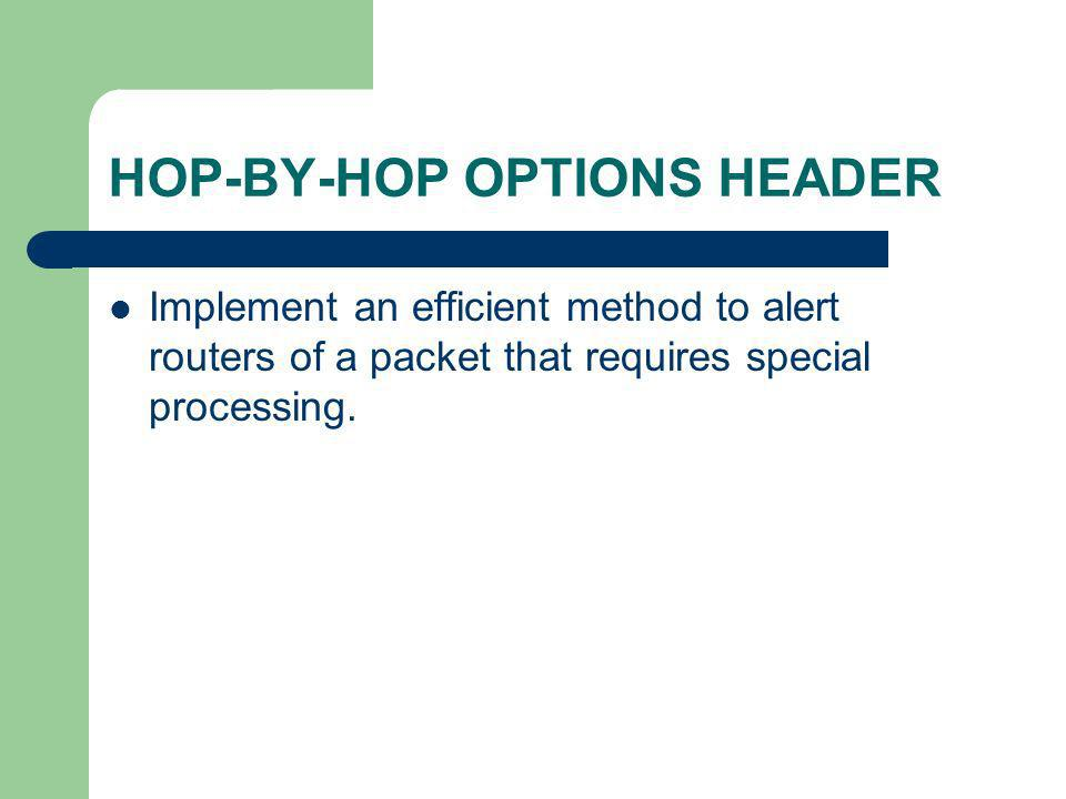 HOP-BY-HOP OPTIONS HEADER