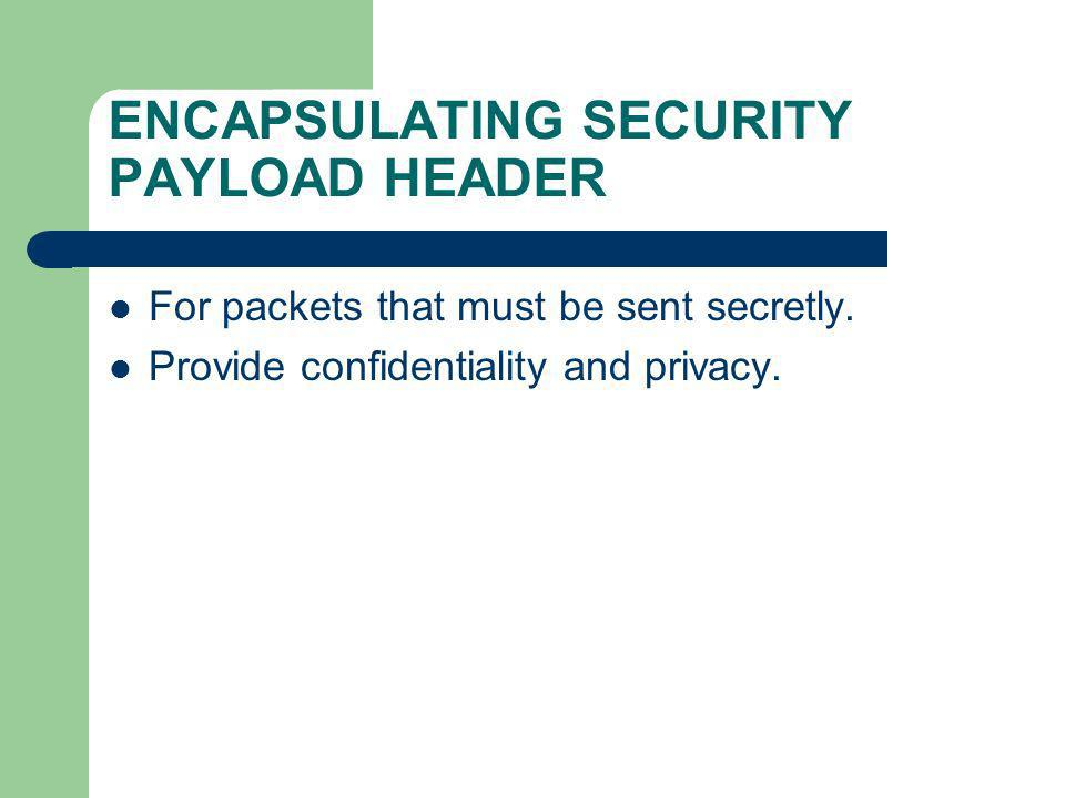 ENCAPSULATING SECURITY PAYLOAD HEADER