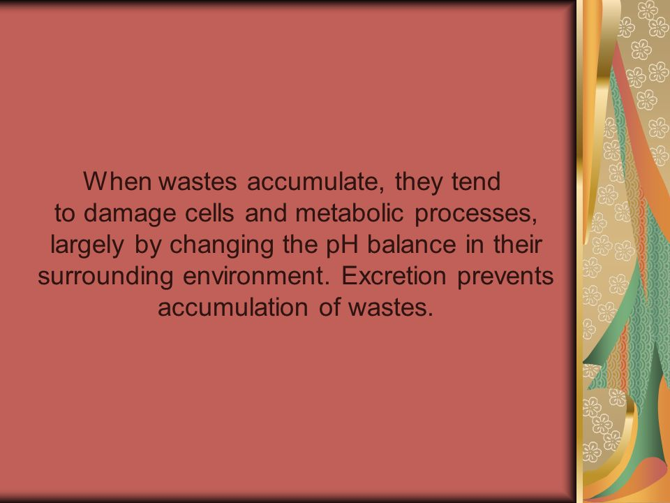 When wastes accumulate, they tend