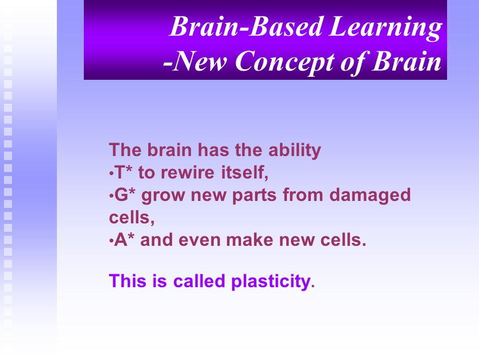 Brain-Based Learning -New Concept of Brain