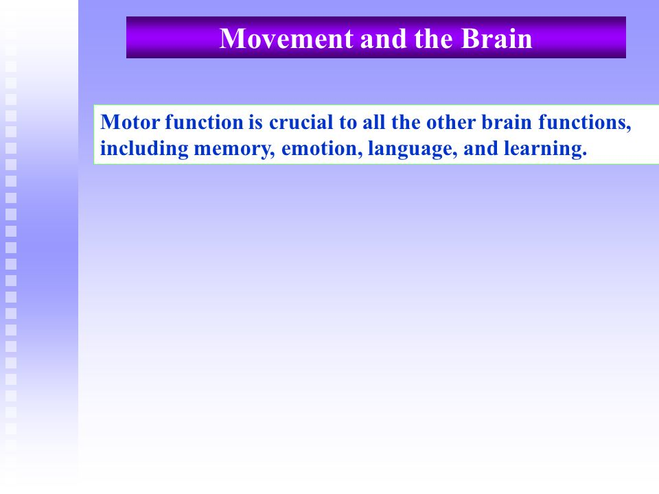Movement and the Brain Motor function is crucial to all the other brain functions, including memory, emotion, language, and learning.