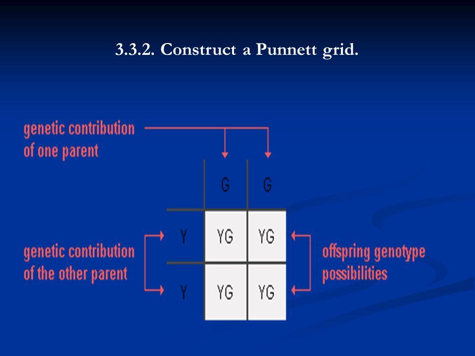 3.3.2. Construct a Punnett grid.