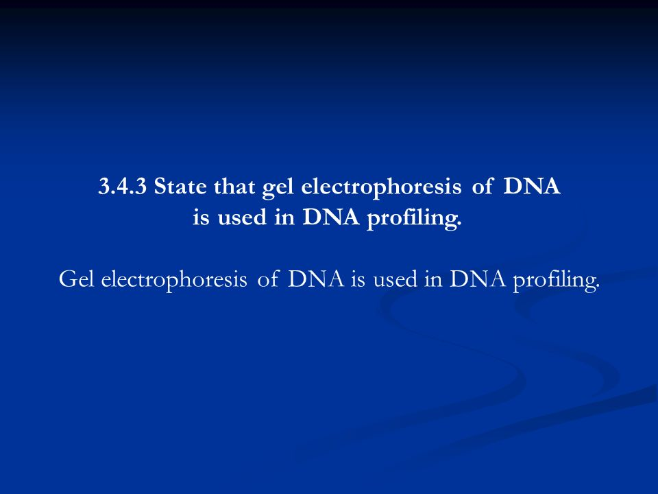 3.4.3 State that gel electrophoresis of DNA