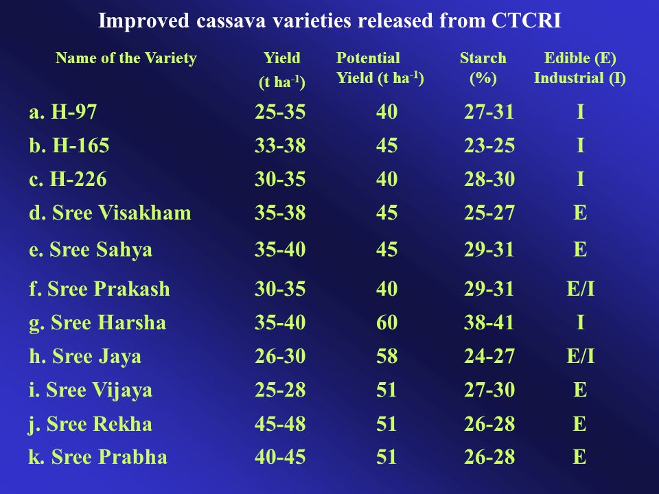 Improved cassava varieties released from CTCRI