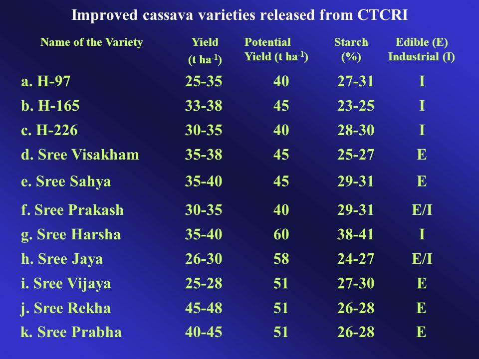 Improved cassava varieties released from CTCRI
