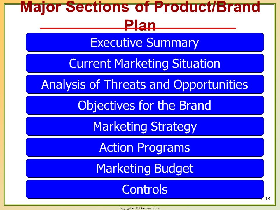 Major Sections of Product/Brand Plan