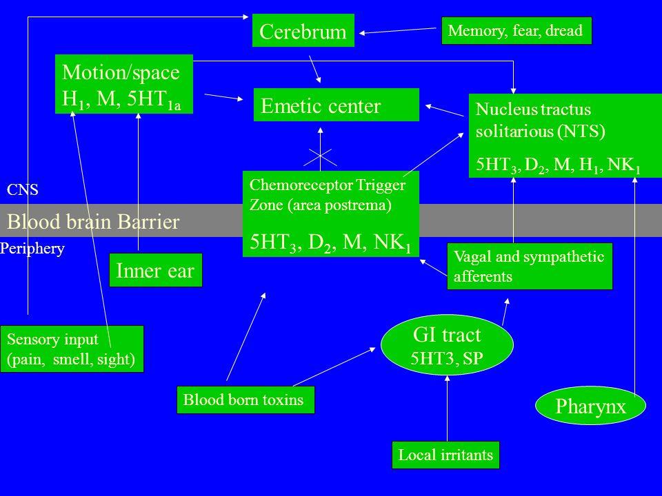 Cerebrum Motion/spaceH1, M, 5HT1a Emetic center 5HT3, D2, M, NK1