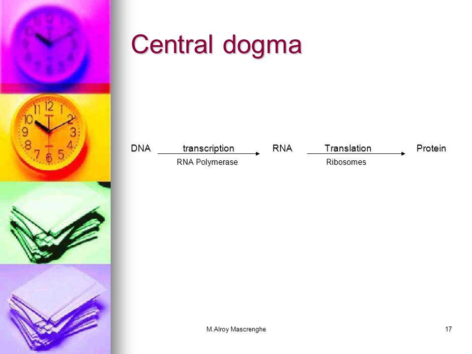 Central dogma DNA transcription RNA Translation Protein