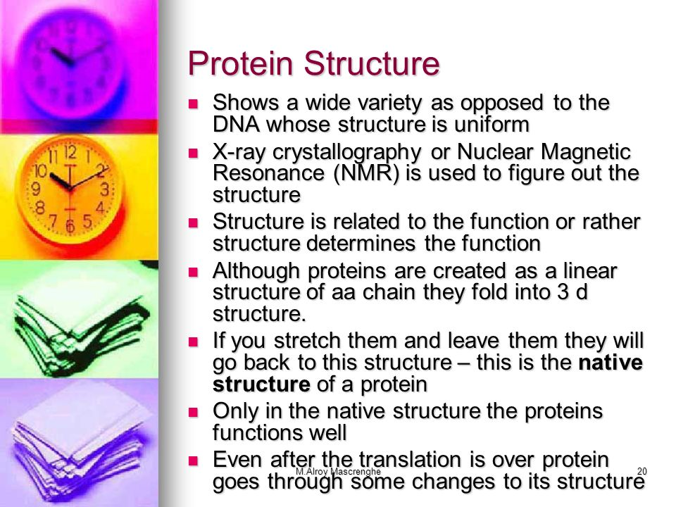 Protein Structure Shows a wide variety as opposed to the DNA whose structure is uniform.