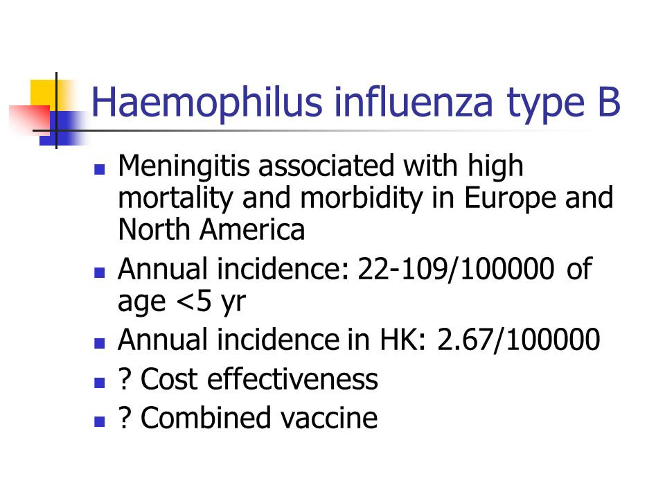 Haemophilus influenza type B