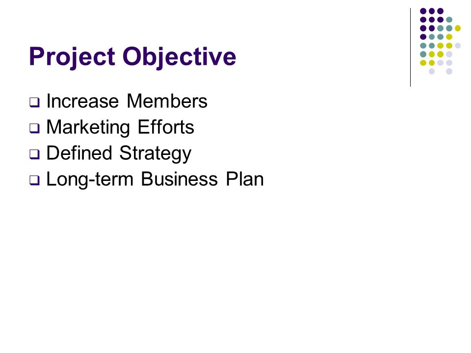 Project Objective Increase Members Marketing Efforts Defined Strategy