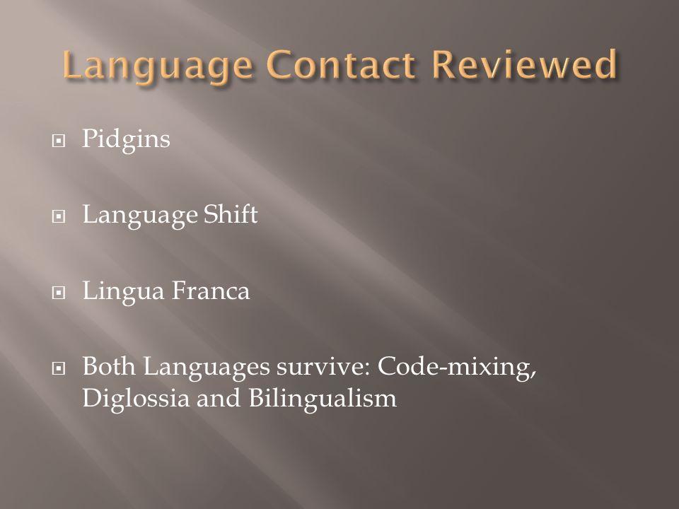 Language Contact Reviewed