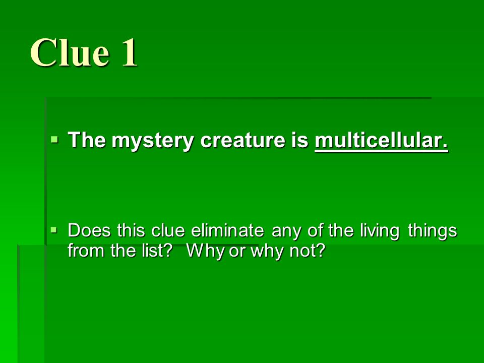 Clue 1 The mystery creature is multicellular.