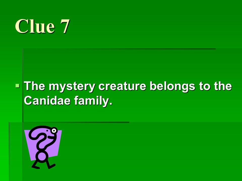 Clue 7 The mystery creature belongs to the Canidae family.