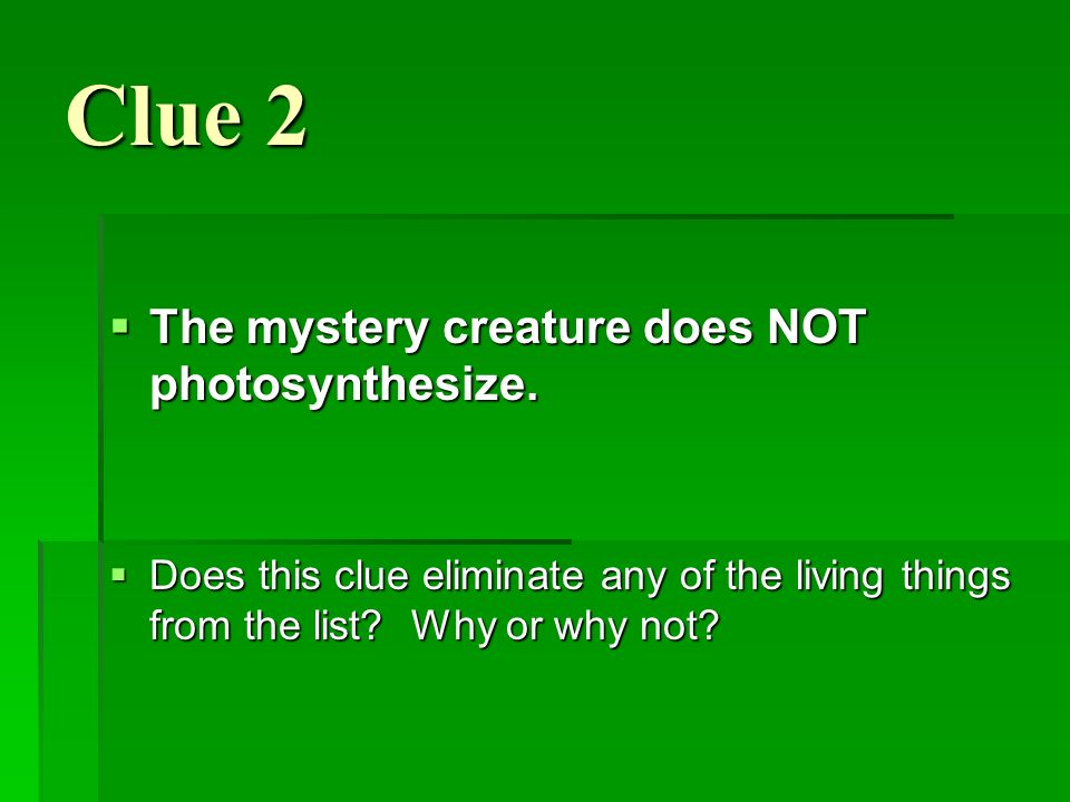 Clue 2 The mystery creature does NOT photosynthesize.