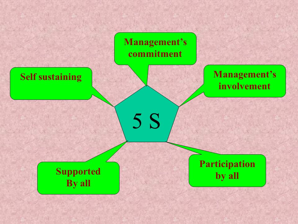 Management's commitment Management's involvement