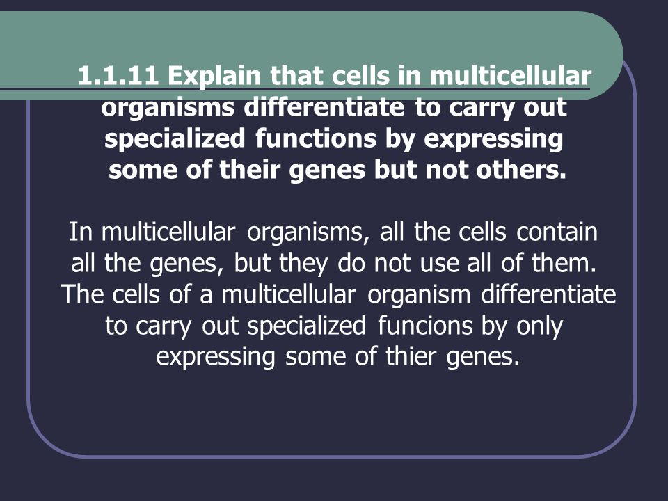 Explain that cells in multicellular