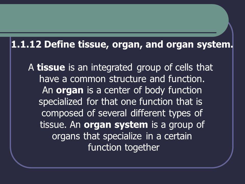 1.1.12 Define tissue, organ, and organ system.
