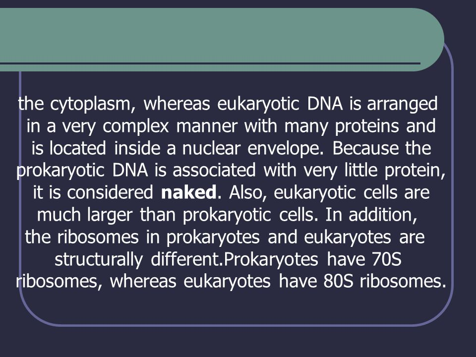the cytoplasm, whereas eukaryotic DNA is arranged