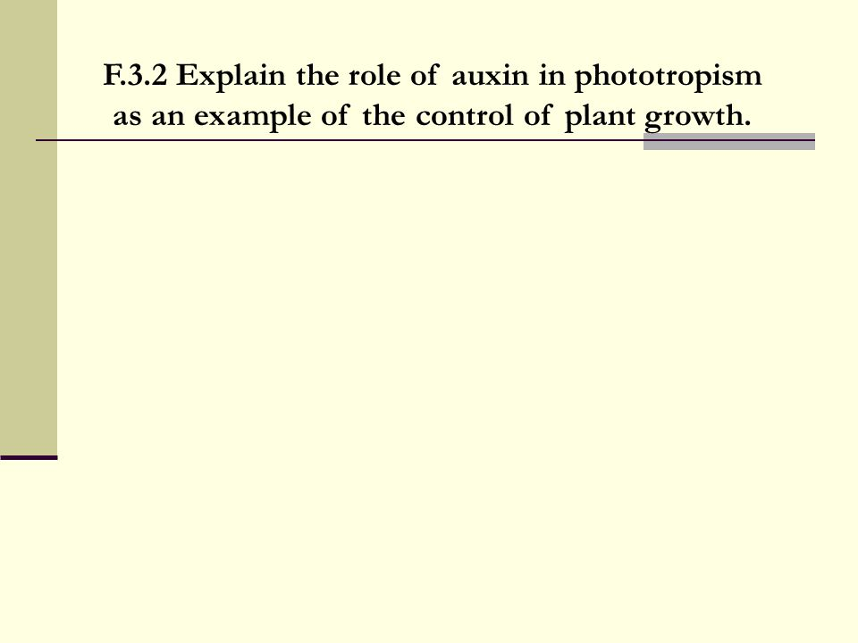F.3.2 Explain the role of auxin in phototropism