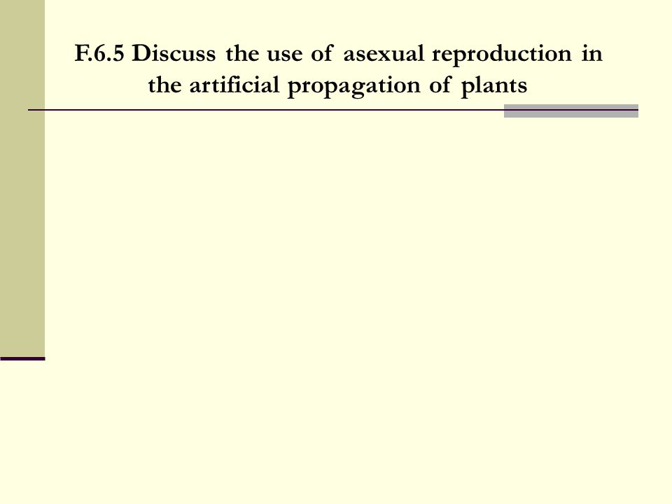 F.6.5 Discuss the use of asexual reproduction in