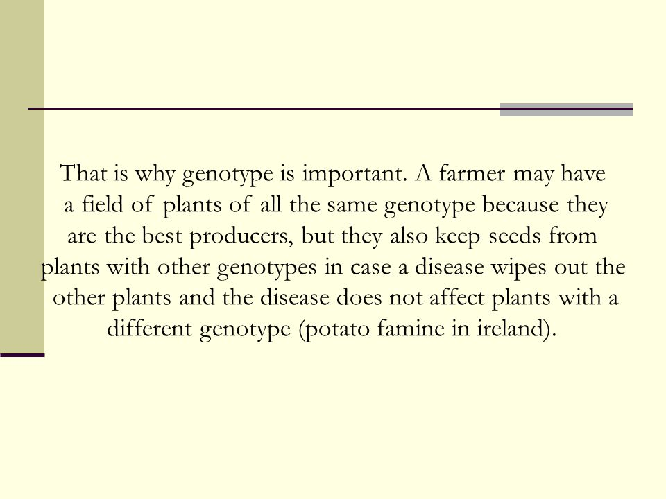 That is why genotype is important. A farmer may have
