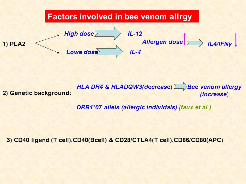 Bee venom allergy (increase)