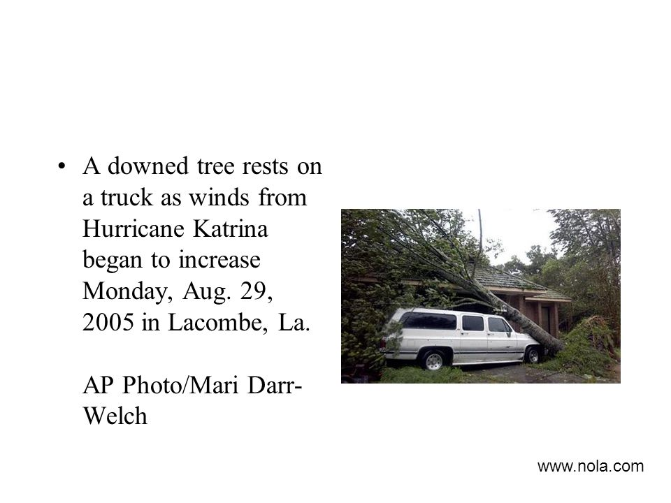 A downed tree rests on a truck as winds from Hurricane Katrina began to increase Monday, Aug. 29, 2005 in Lacombe, La. AP Photo/Mari Darr-Welch