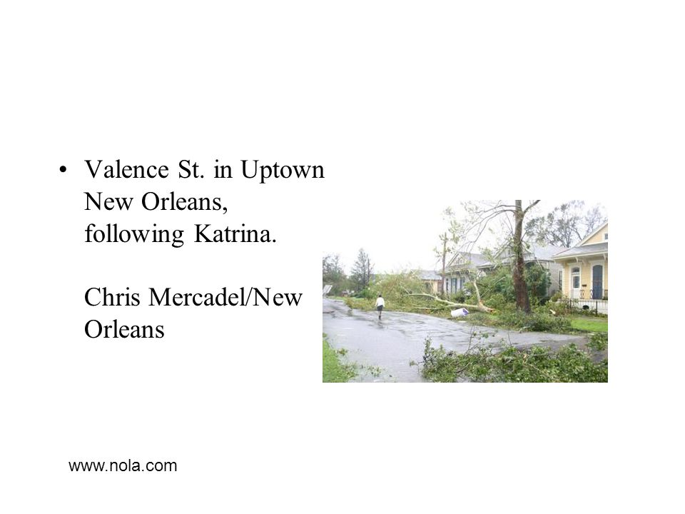 Valence St. in Uptown New Orleans, following Katrina