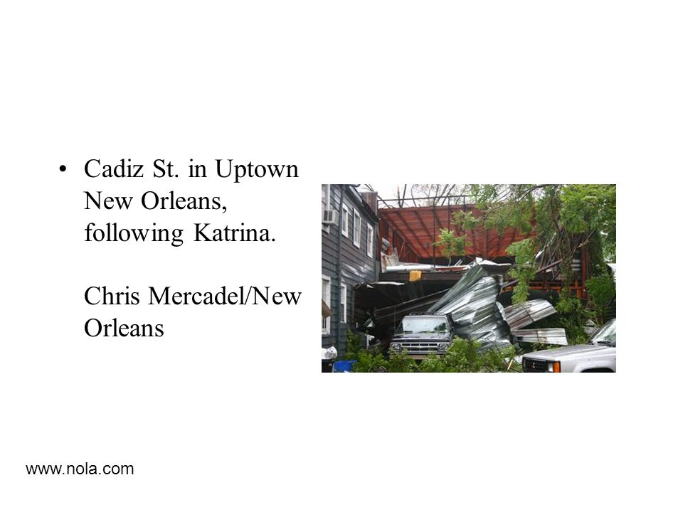 Cadiz St. in Uptown New Orleans, following Katrina