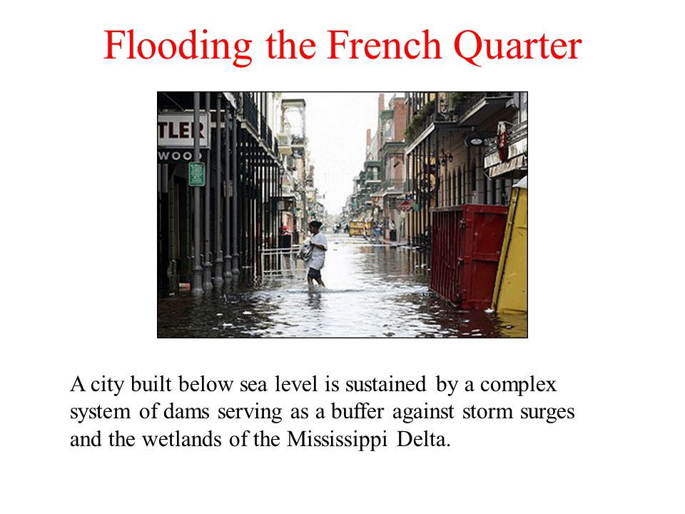 Flooding the French Quarter
