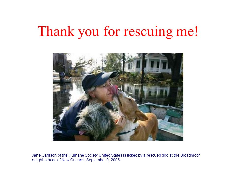Thank you for rescuing me!